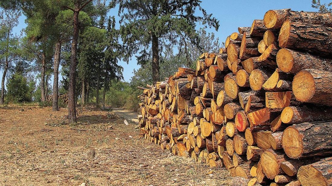 Στην αντεπίθεση για τη διανομή της δημοτικής ξυλείας στην Κόνιτσα